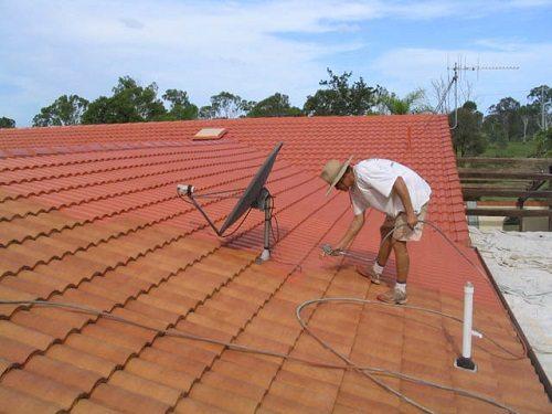 Если речь о крышах с низким углом наклона - имеет смысл выполнить окрашивание самостоятельно