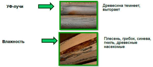 На фото- причины для обработки дерева лакокрасочными средствами