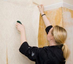 Рекомендации по поклейке обоев на стены из фанеры
