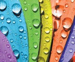Пример возможных цветовых решений