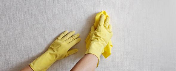 Бытовая химия, вода и чистая ветошь вернут влагостойкой поверхности чистоту