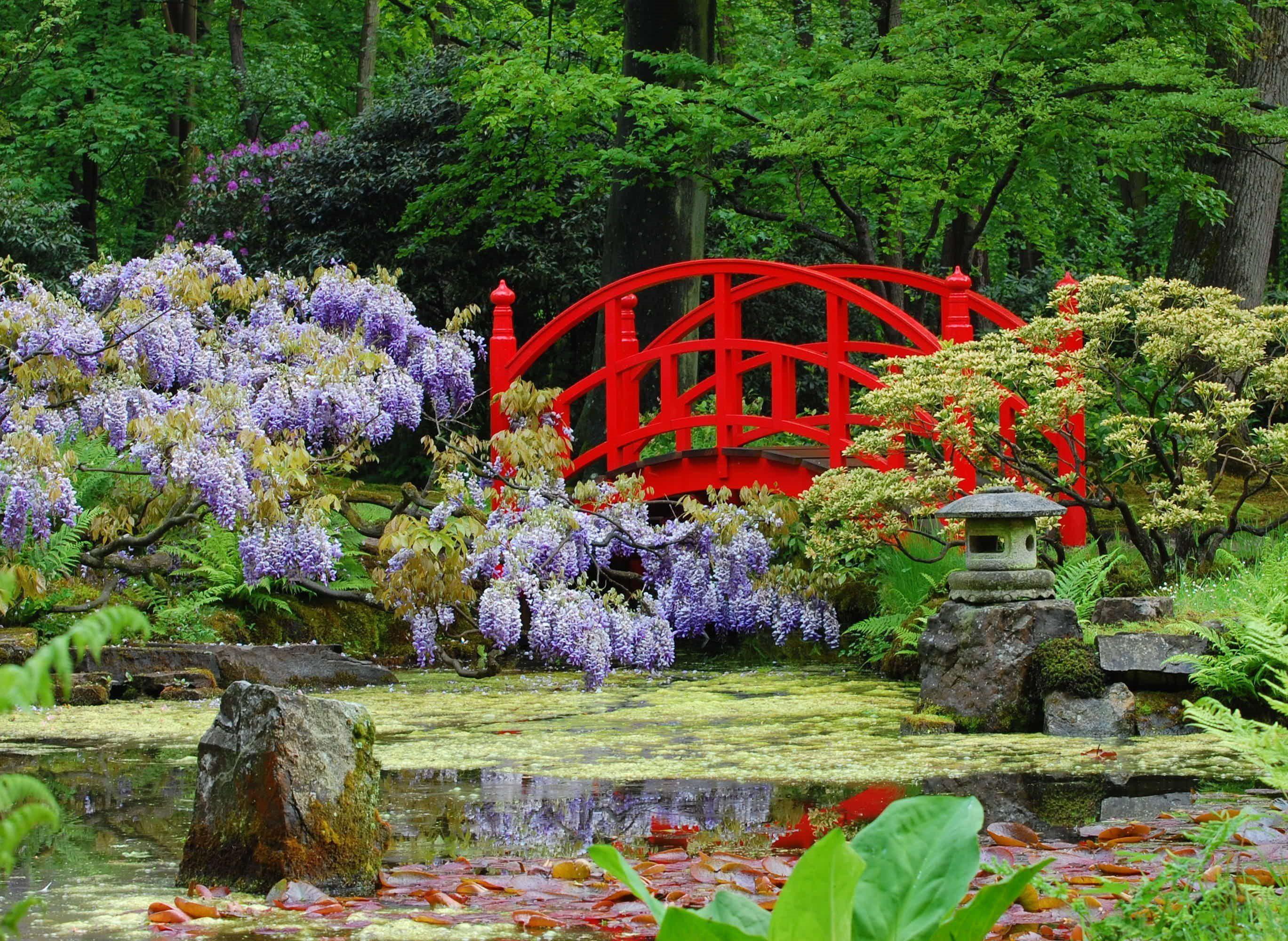 Фотообои - японский сад с мостиком
