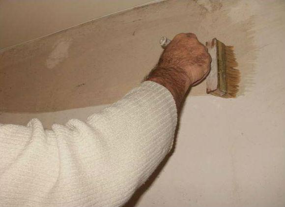 Грунтовка стен с помощью широкой кисти