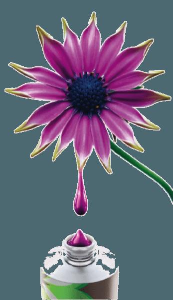 Источником происхождения очень многих красящих веществ является сама природа