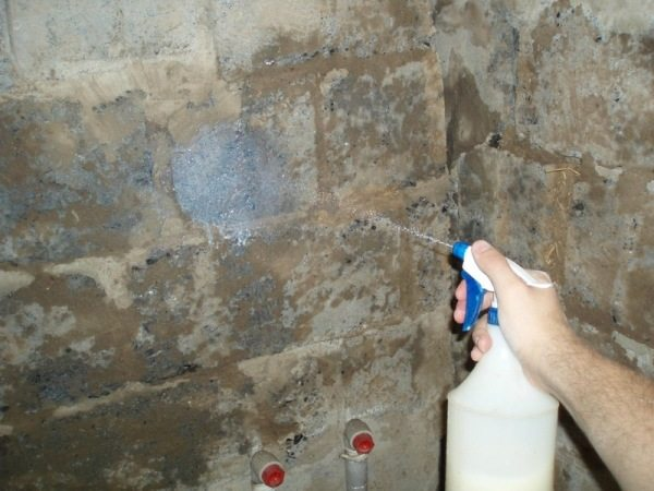 Многие строители наносят грунтовку на стену с помощью распылителя