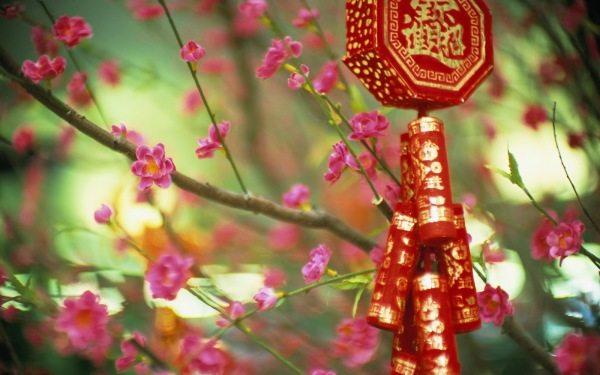 На фото - типичные фотообои с китайскими мотивами