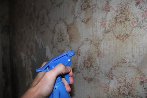 На фото использование пульверизатора для быстрого снятия обоев со стен.