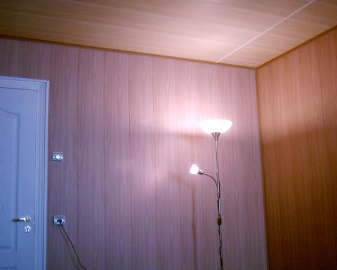 На фото: пластиковые панели для отделки стен облагородят жилище за очень разумные деньги