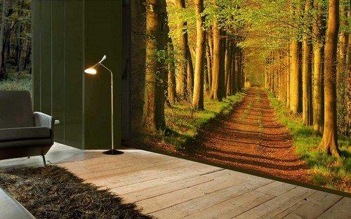 На фото представлена панорама, на которой отображена дорога через лес (флуоресцентные обои с 3d эффектом)
