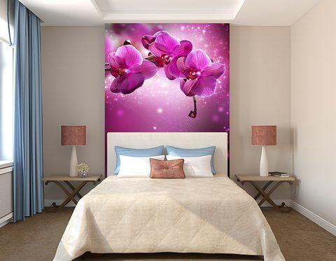 Обои: фиолетовые цветы положительно влияют на ваше здоровье