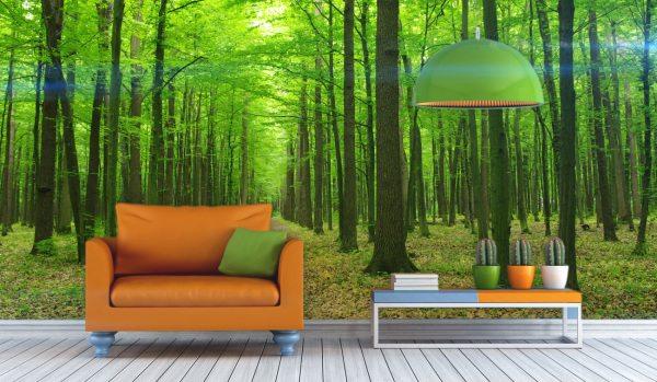 Отдых в лесу благодаря возможностям фотообоев
