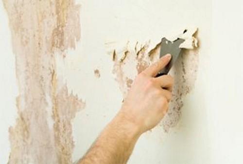 Перед началом работ с любой поверхности стоит удалить старые отделочные материалы