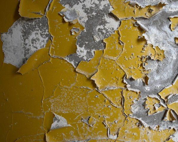 Результат длительного воздействия природных явлений на покрытие масляной краски