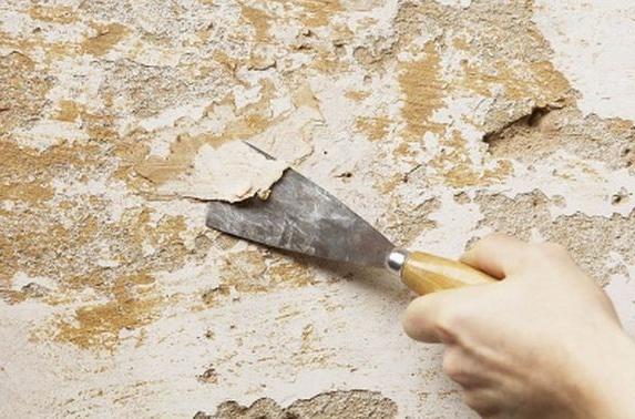 Старую краску или штукатурку легко снимать с помощью шпателя, как на фото, и специальной пропитки, размягчающей клеевую основу материалов