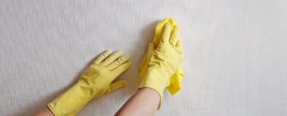 Влажная уборка бывает необходима не только полу.