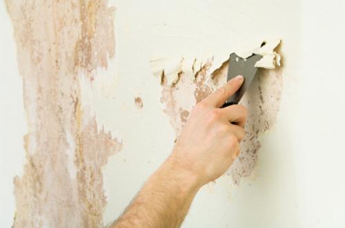 Нанесение шпатлевки на окрашенные стены материалы полиуретановые полы