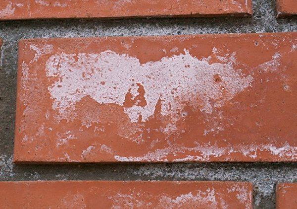 Высолы портят вид кирпичной стены, краска защитит от них.